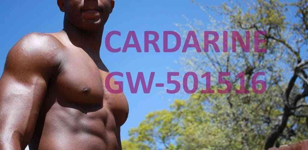 GW 501516 CARDARINE
